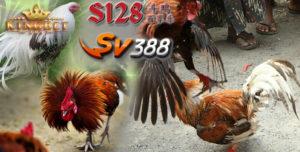 Situs S128